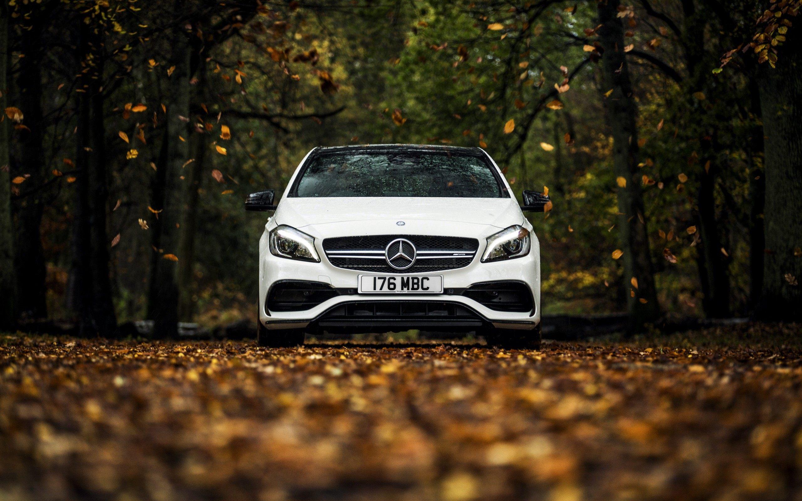 Mercedes W176 Autumn Car Wallpaper Download For Desktop 2560x1600