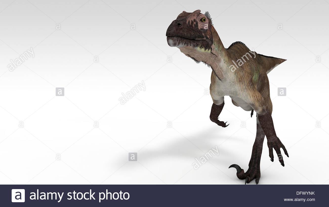 Utahraptor dinosaur white background Stock Photo 61421519   Alamy 1300x821