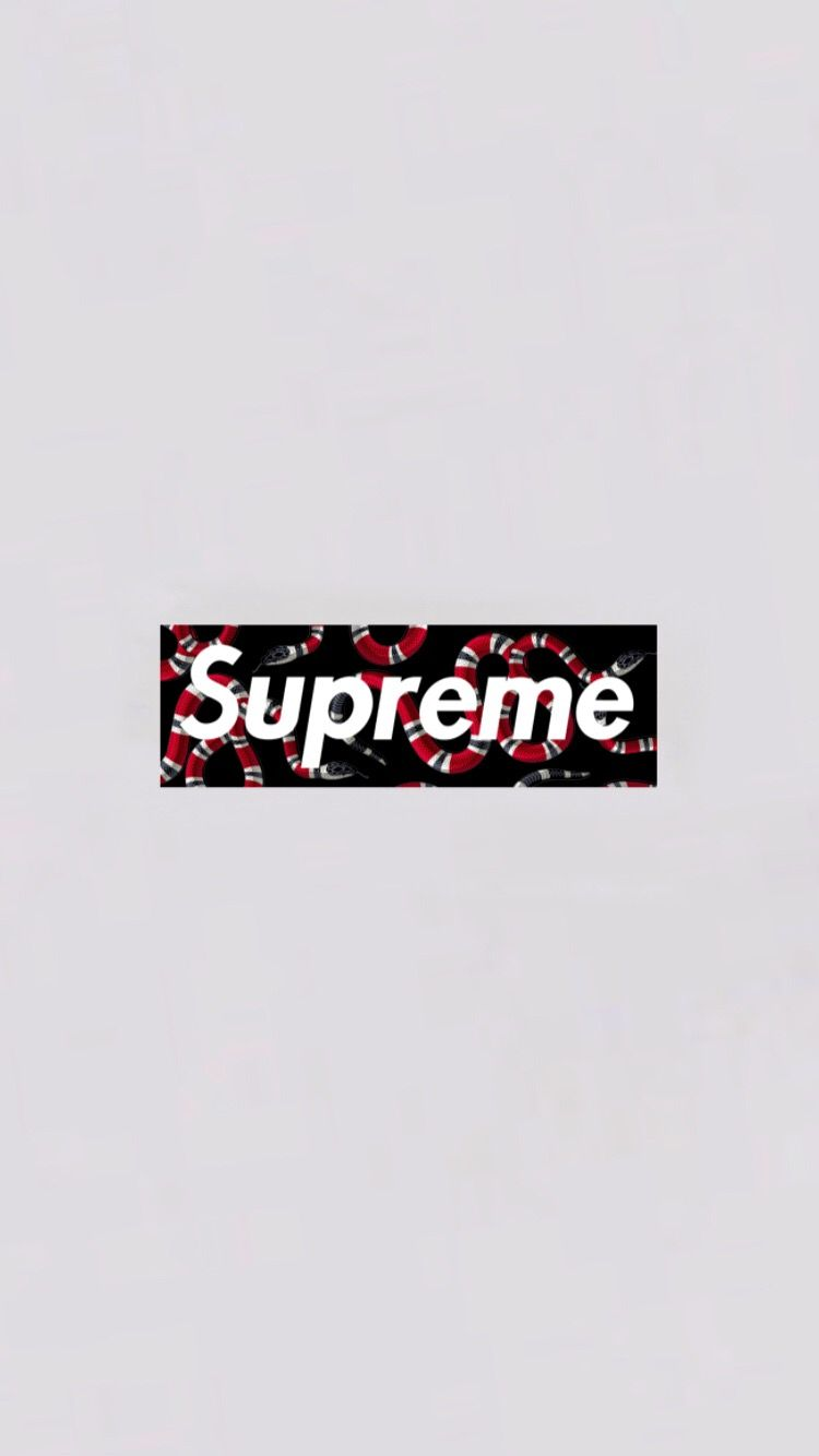 Supreme supremexgucci gucci guccigang guccisnake tumblr 750x1334