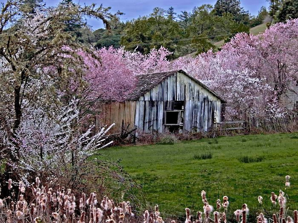 Related Pictures Old Barn Wallpaper Desktop 1024x768