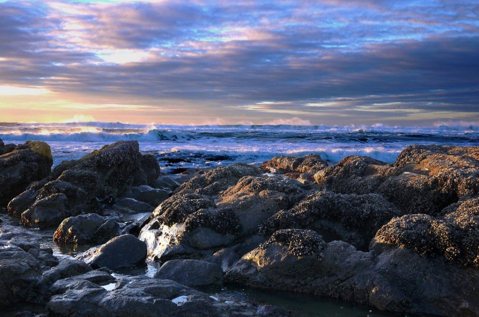 Beautiful Oregon Coast Wallpaper Images Wallpapersafari