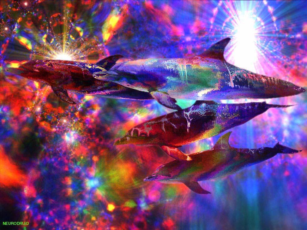 Bad Acid Trip Wallpaper 17261 Bad Acid Trip Background images Bad 1024x768