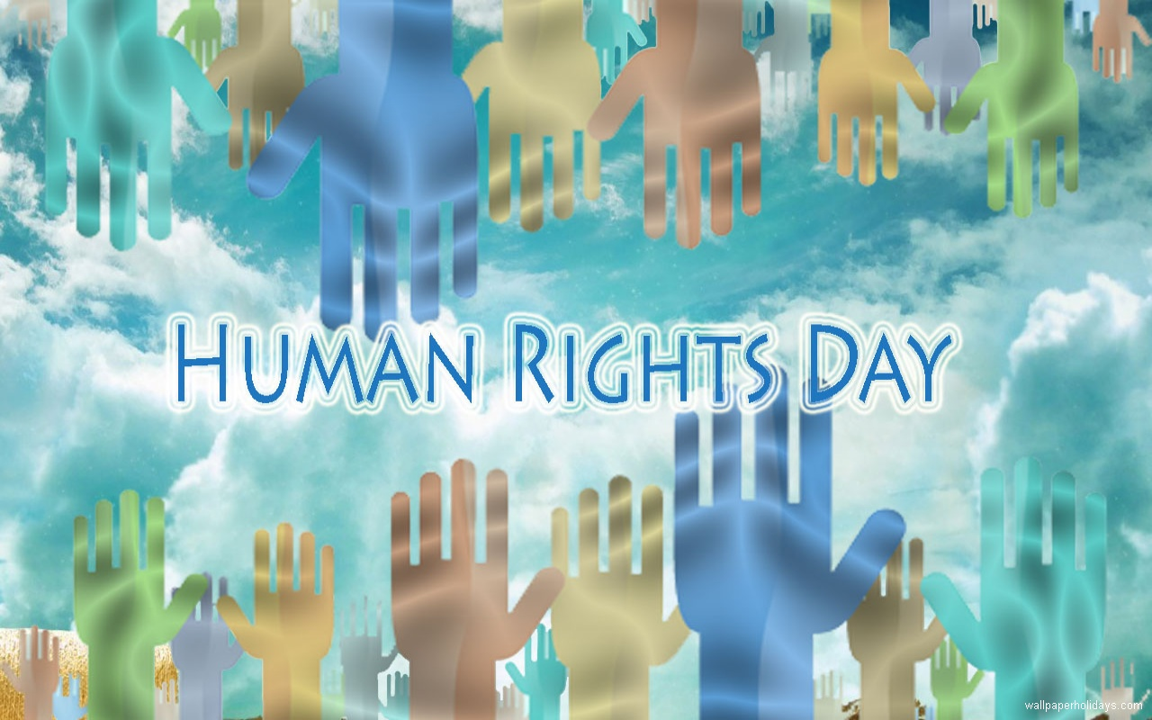 Best 48 Human Rights Wallpaper on HipWallpaper Human Skeleton 1280x800