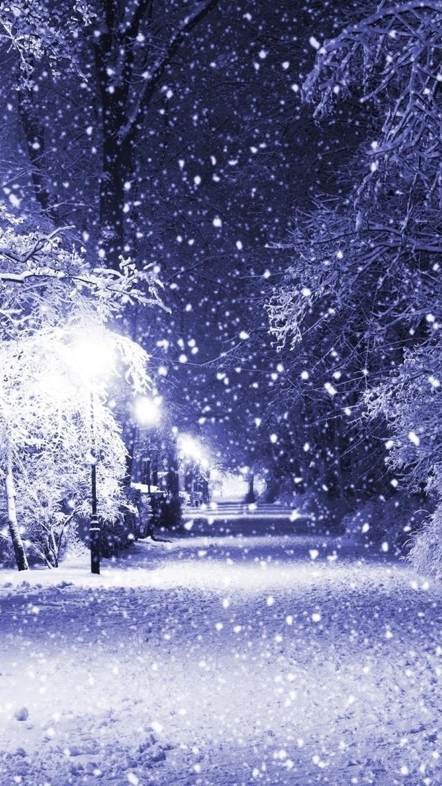 IPhone 5 HD Wallpaper Winter Night Landscape 6401136 640x1136