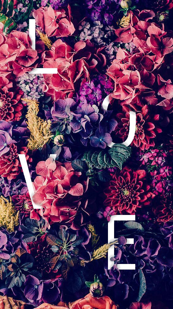 love flower poster photoshop in 2020 Floral wallpaper desktop 564x1002
