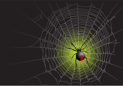 Vector spider web design background graphics 05   Vector Background 500x351