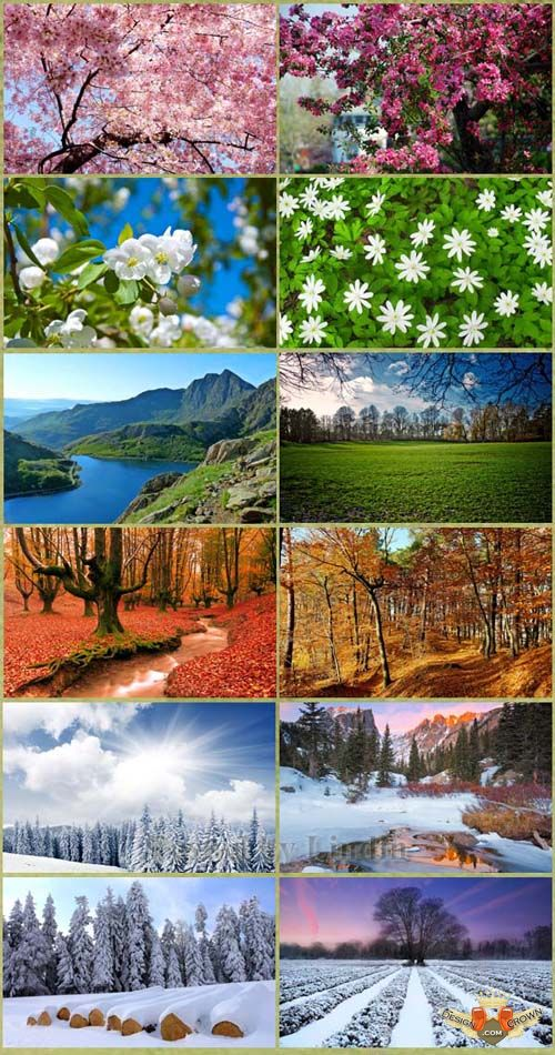 desktop wallpapers149942 fabulous nature images and wallpapers 2012 500x950