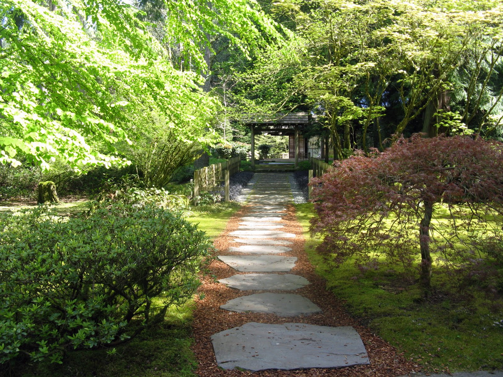 japanese garden hd wallpaper wallpapersafari