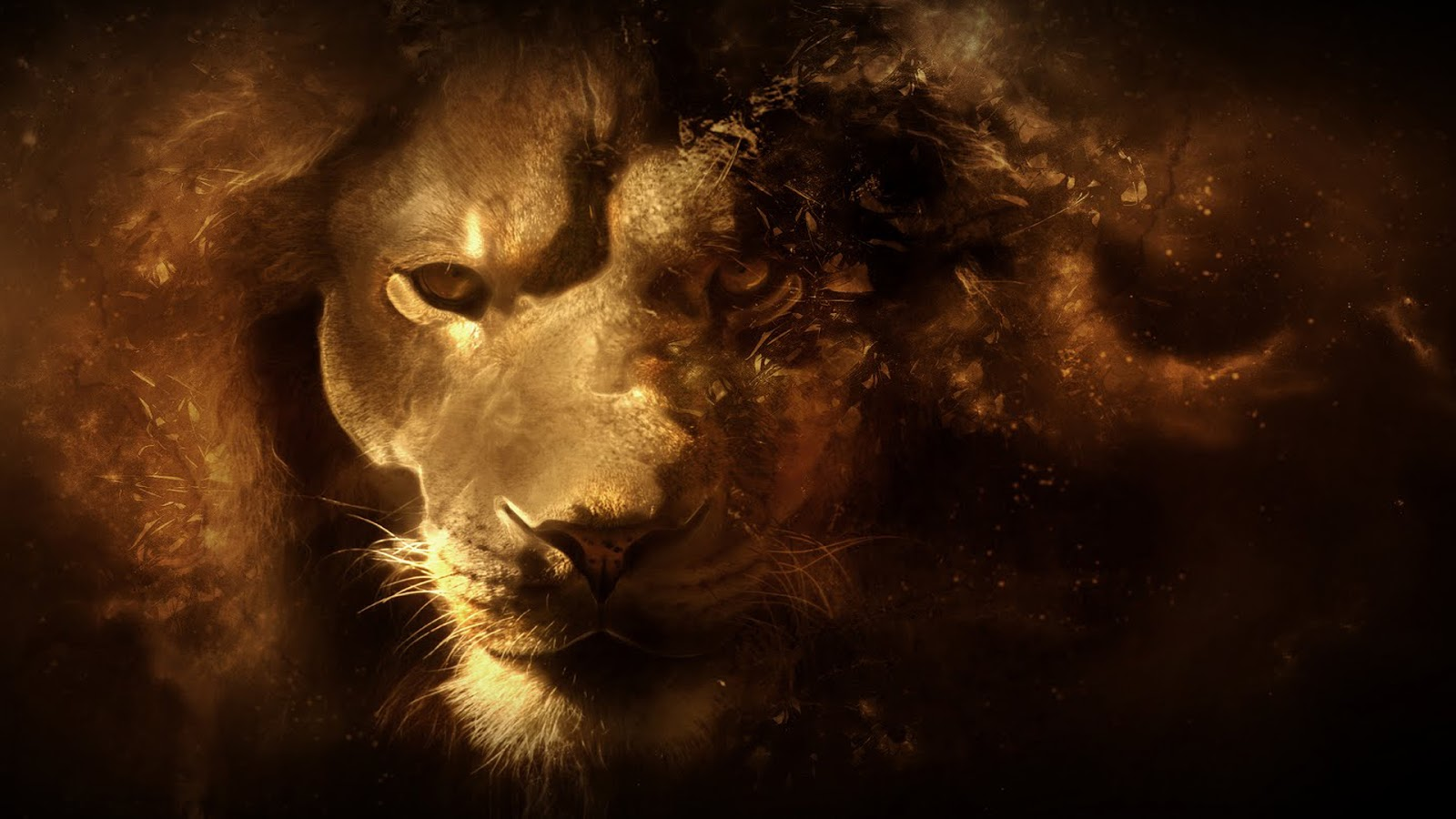 Lion Vector Art 1080p HD Wallpaper Latest HD Wallpapers 1600x900