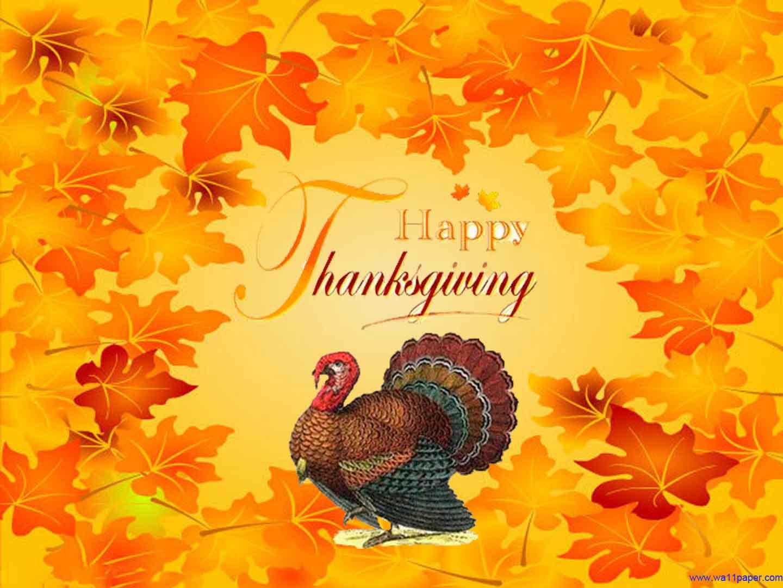 Turkey Happy Thanksgiving Wallpapers   Top Turkey Happy 1440x1080