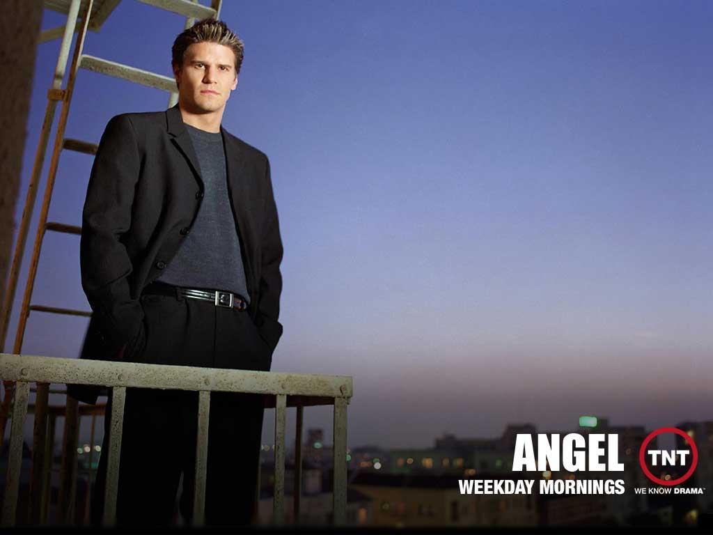 Boreanaz   David Boreanaz in Angel TV Series Wallpaper 2 1024x768 1024x768