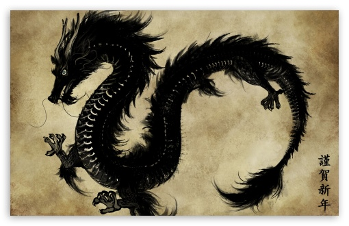 Chinese Black Dragon HD desktop wallpaper High Definition 510x330