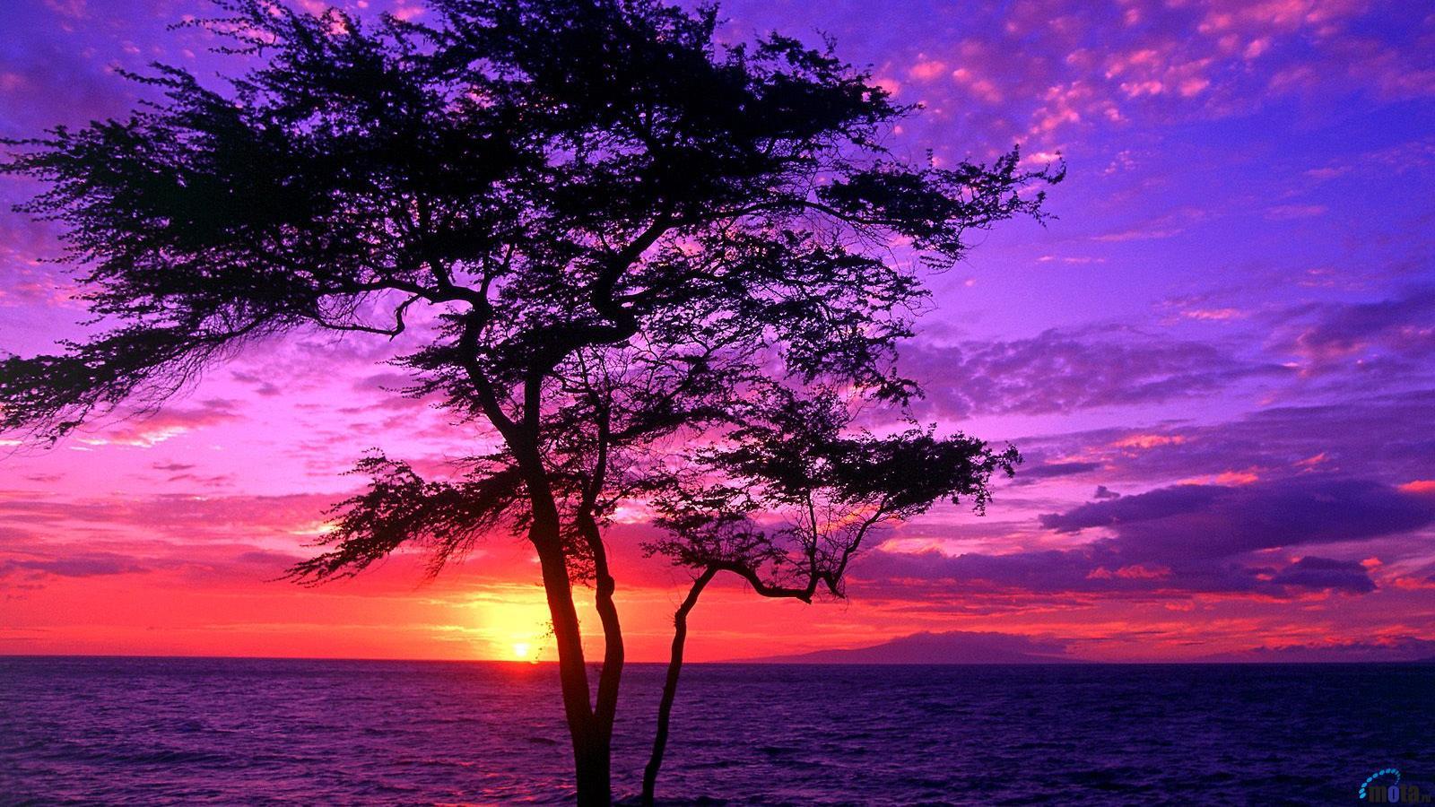 Maui Hawaii 1600 x 900 widescreen Desktop wallpapers and photos 1600x900