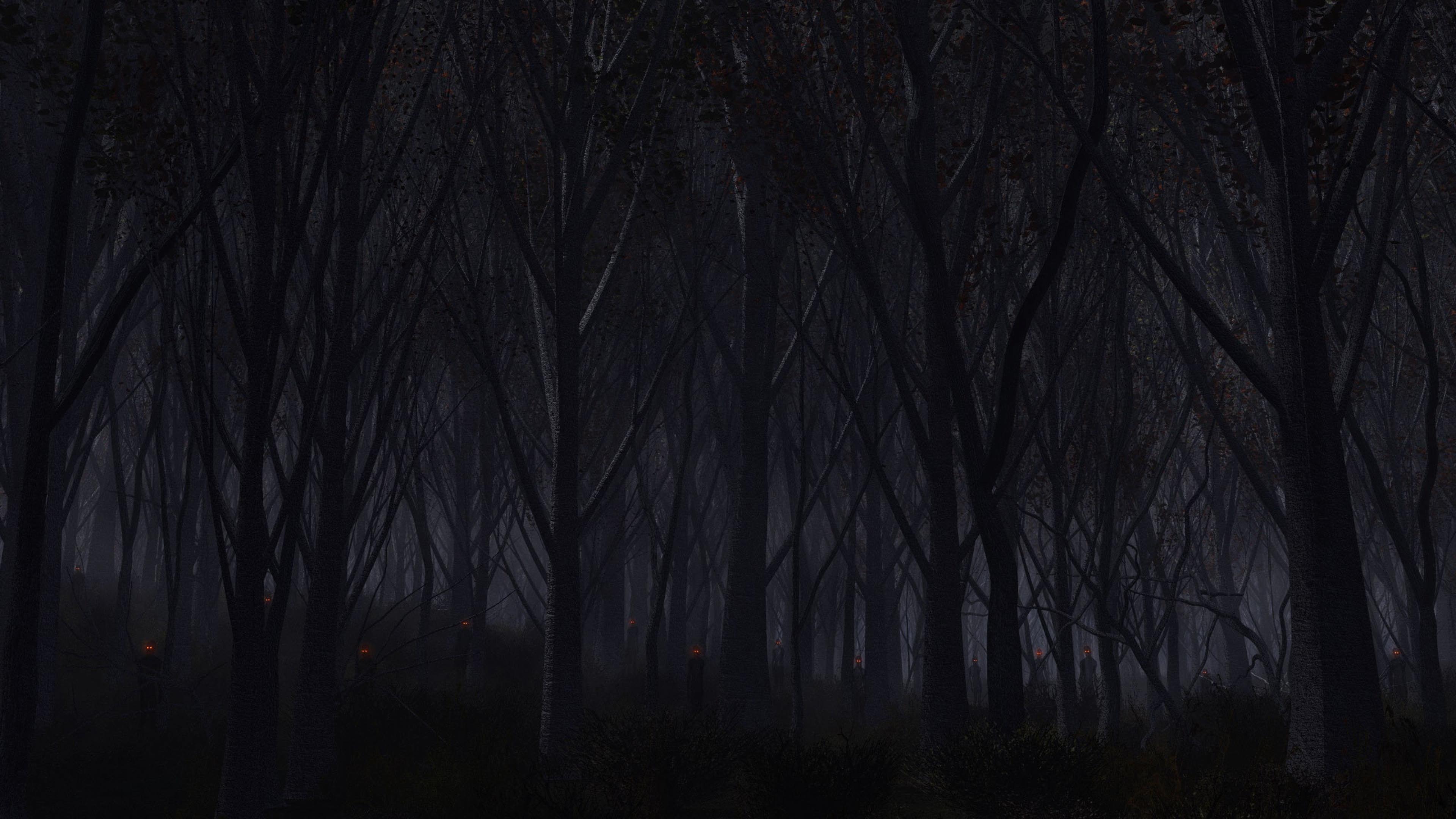 Forest Trees Background Dark Wallpaper Background 4K Ultra HD 3840x2160