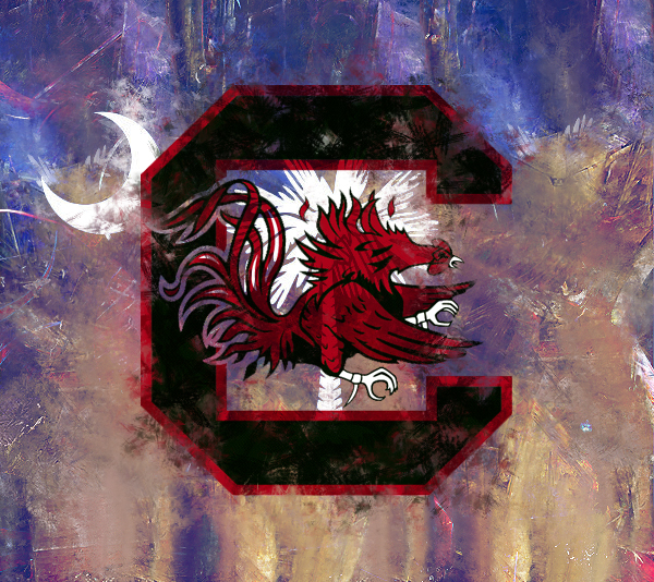 South Carolina Gamecocks 600x534