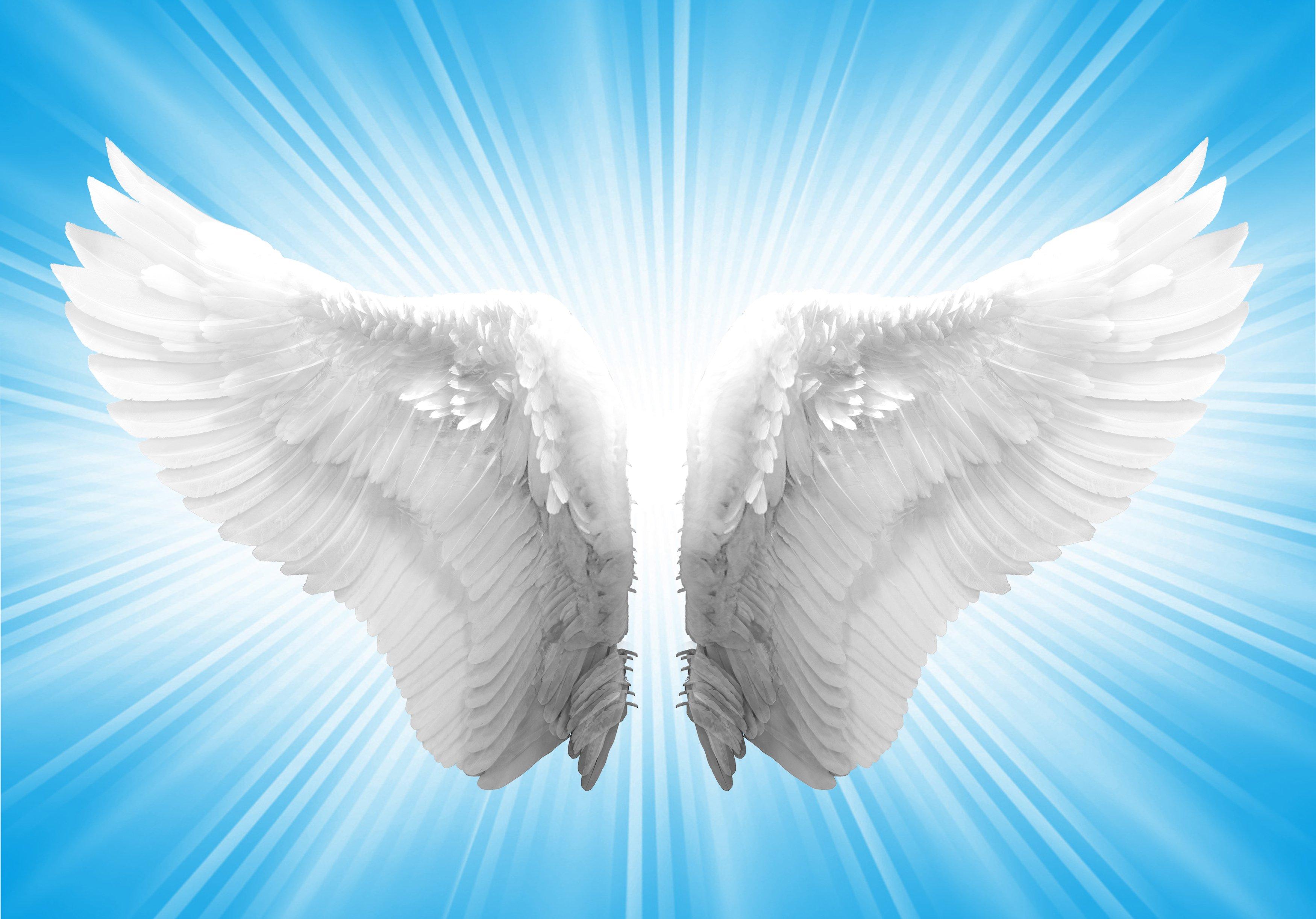 Free Wallpaper Angel Wings - WallpaperSafari