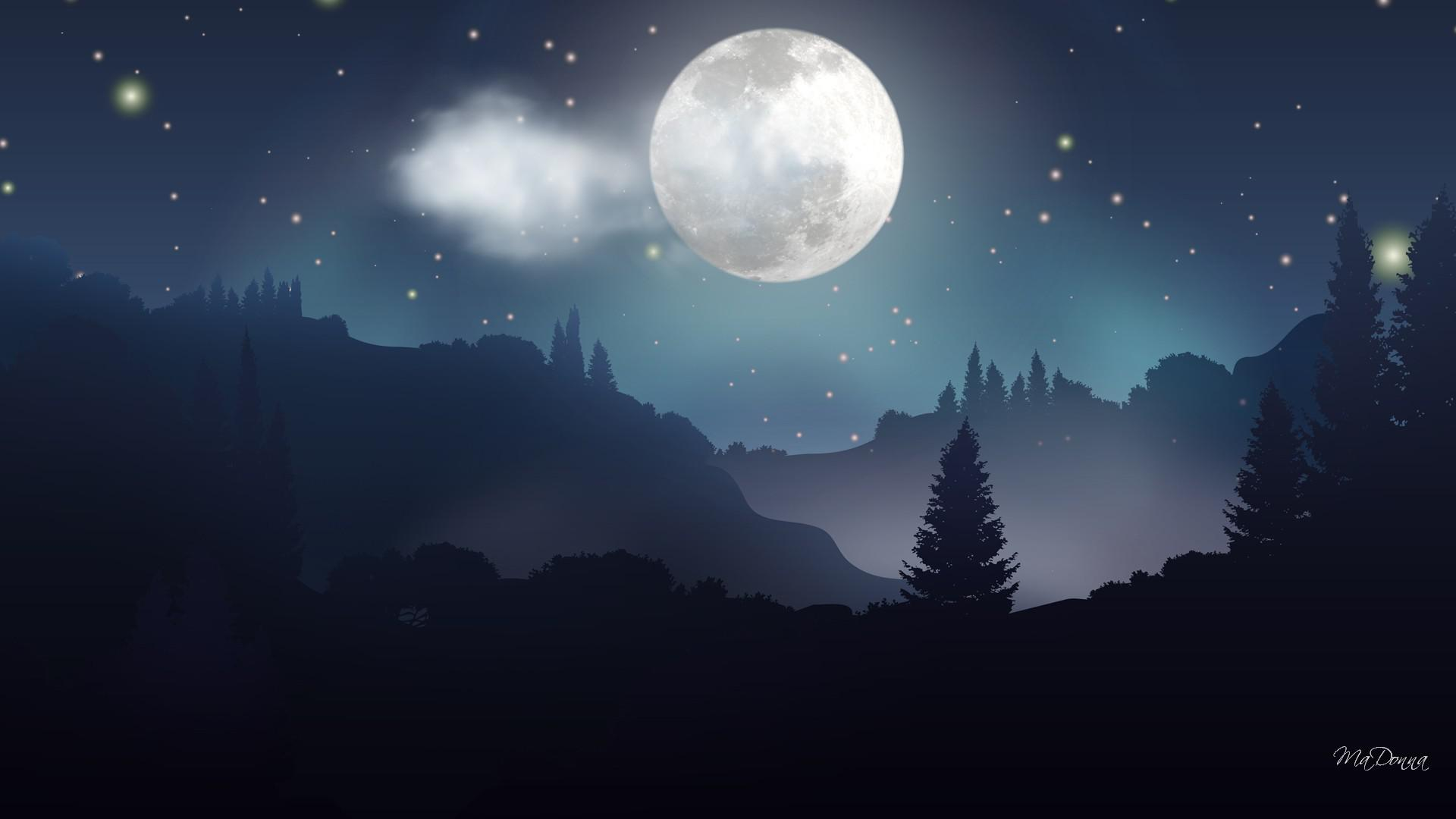 Free Download Moonlight Forest Night Hq Wallpaper 153828