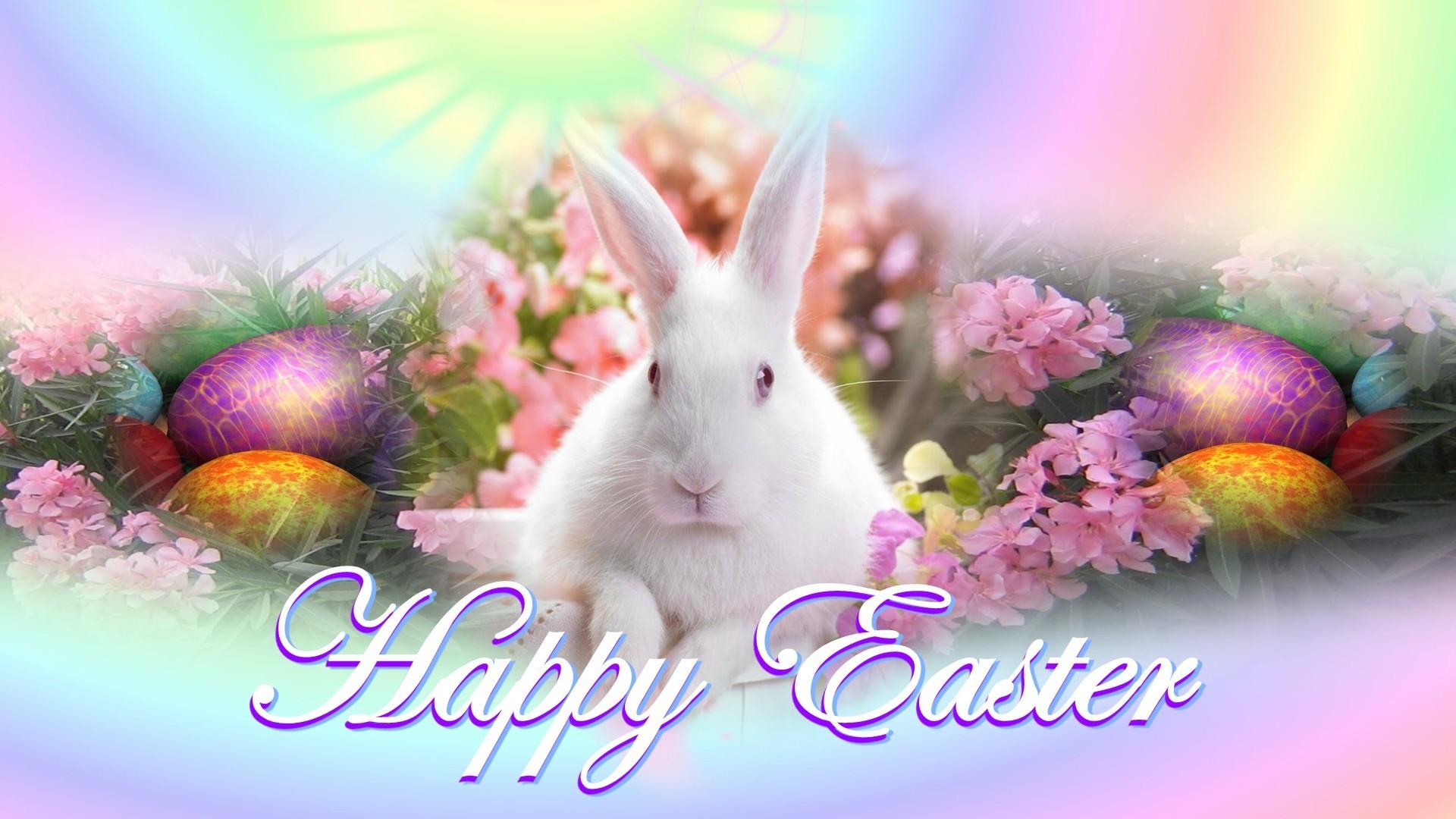 Happy Easter Bunny HD Wallpaper of Greeting   hdwallpaper2013com 1920x1080