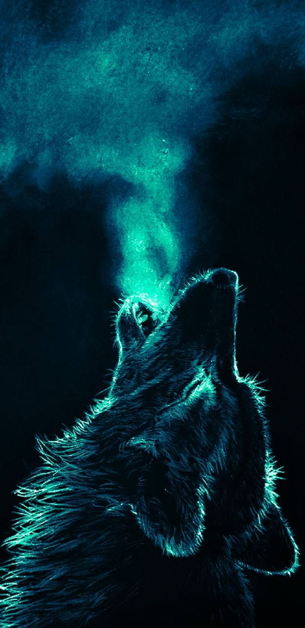 i howling everday and every night Fondo de pantalla lobo 623x1280