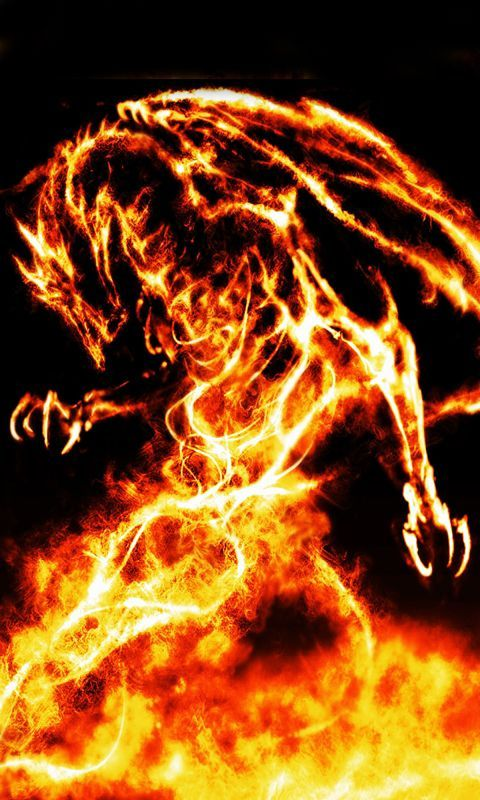 Dragon wallpaper for phones wallpapersafari - Phone wallpapers fire ...