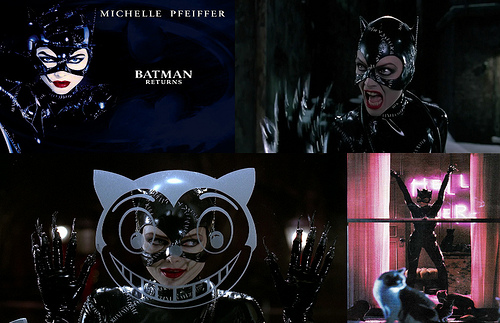 Catwoman Desktop Wallpaper Flickr   Photo Sharing 500x323