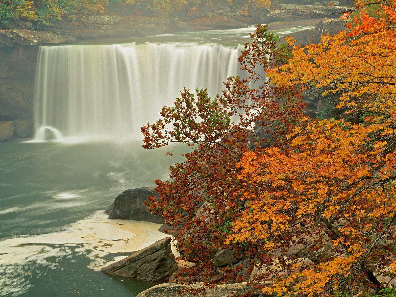 Fall Scenes Wallpapers 1600x1200