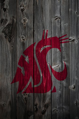 Washington State Cougars Wallpaper 2 Go Cougs Pinterest 333x500
