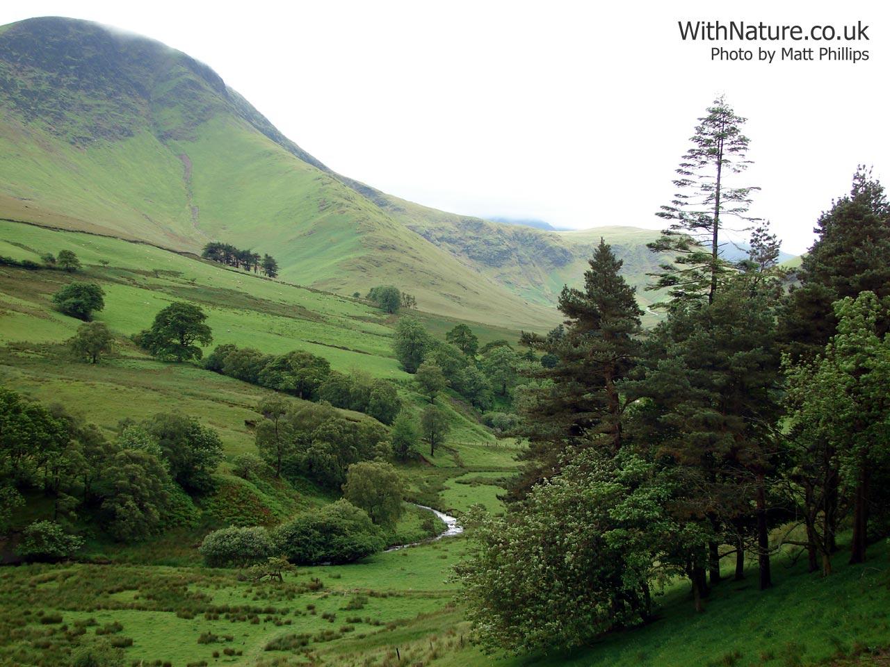 Landscape Countryside desktop background wallpapers 1280x960