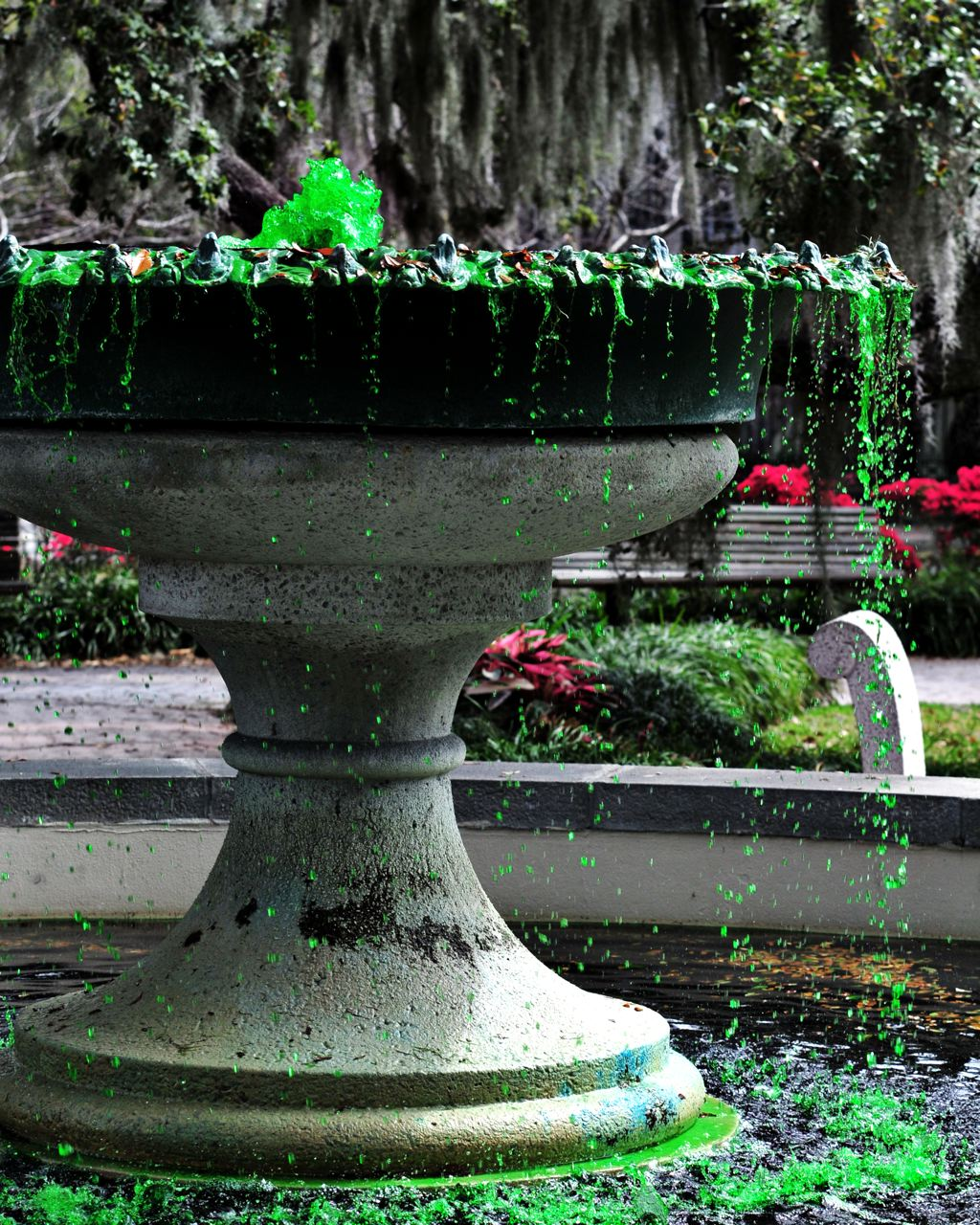 from the 188th St Patricks Day Celebration here in Savannah 1024x1280