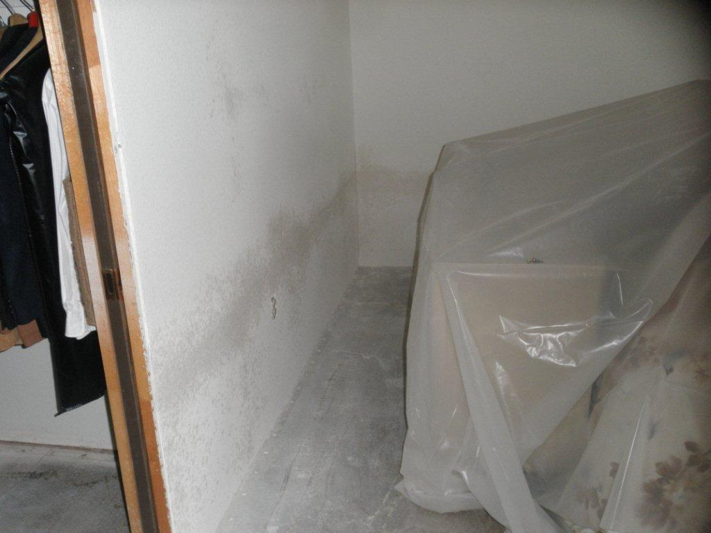 Remove Wallpaper From Drywall 1024x768