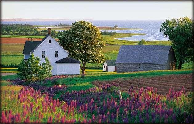 Prince Edward Island Tourist Destinations 630x403