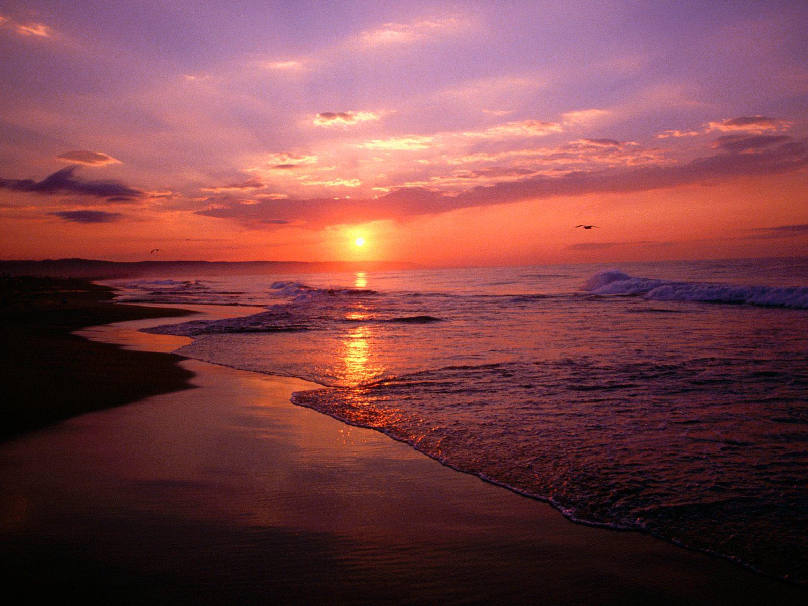 Beach Sunrise California Beach Wallpaper Beach Wallpaper Backgrounds 1600x1200