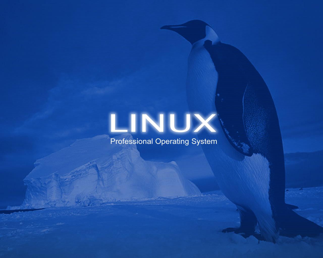 Linux Desktop Wallpaper   Desktop Backgrounds 1280x1024