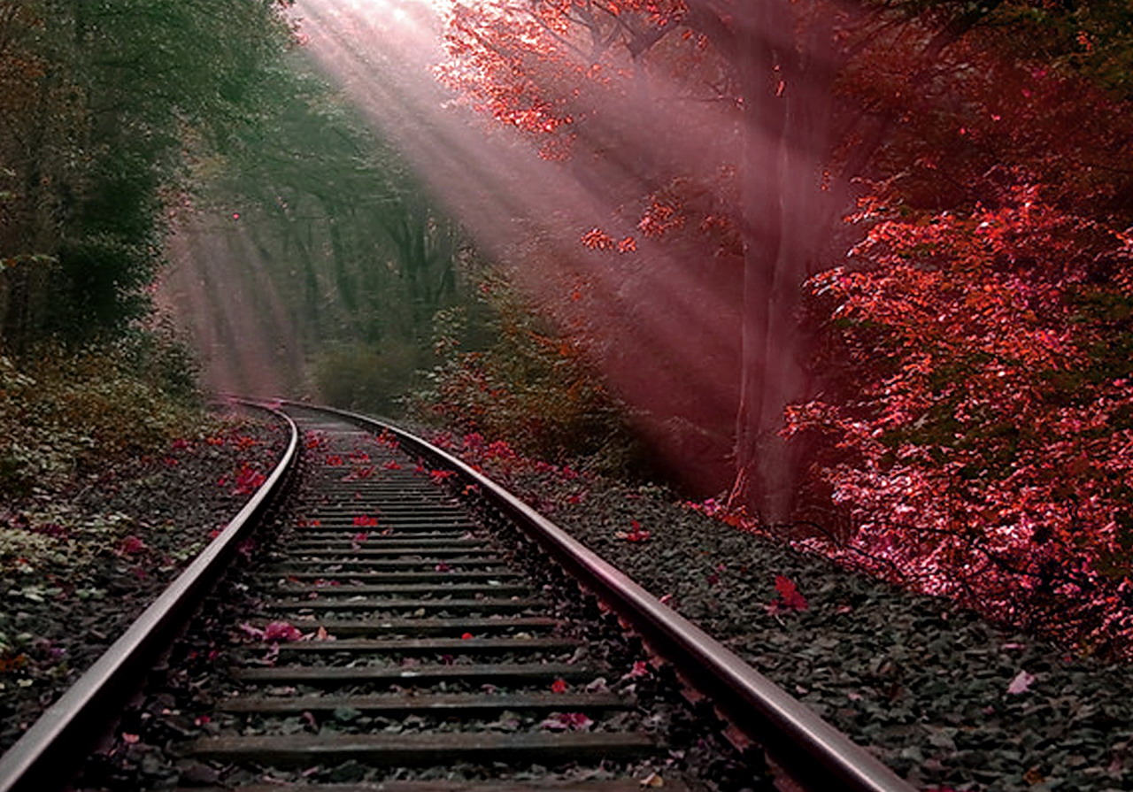 Rail Track On The Beach Wallpapers Hd