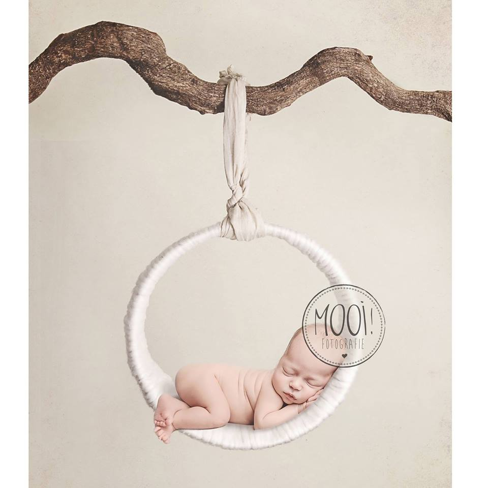 MOOI Digital props Backgrounds for Newborn photographers 960x960