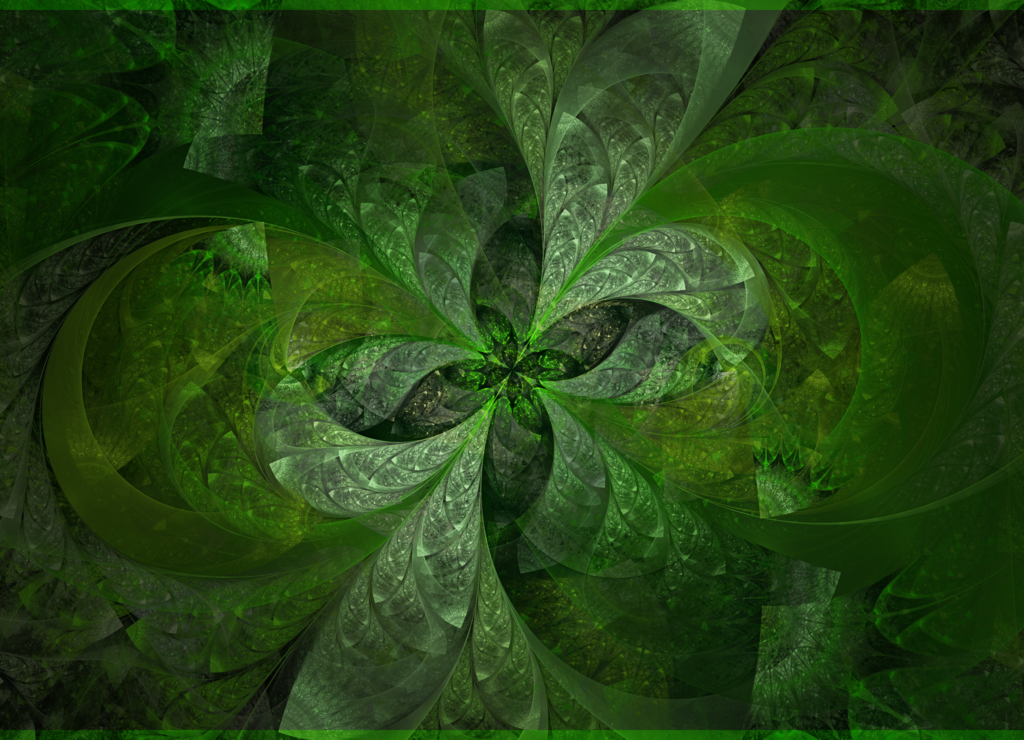 Real Four Leaf Clover Wallpaper Four leaf clover by 1024x740