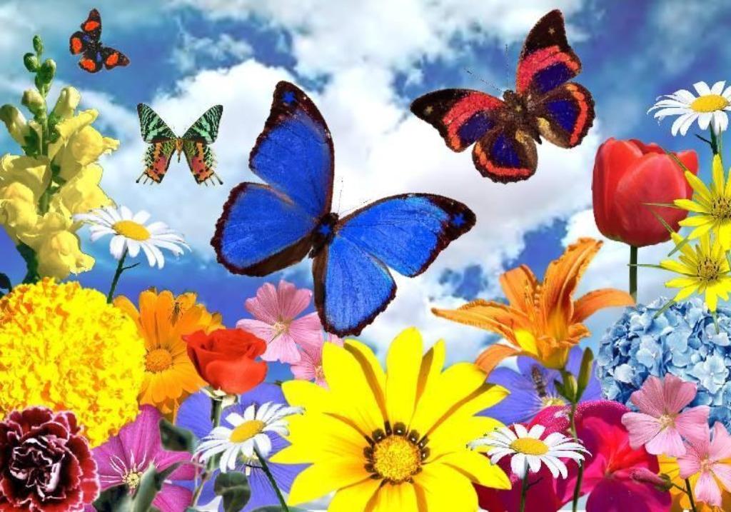 3D Art Flowers Wallpapers 1024x717