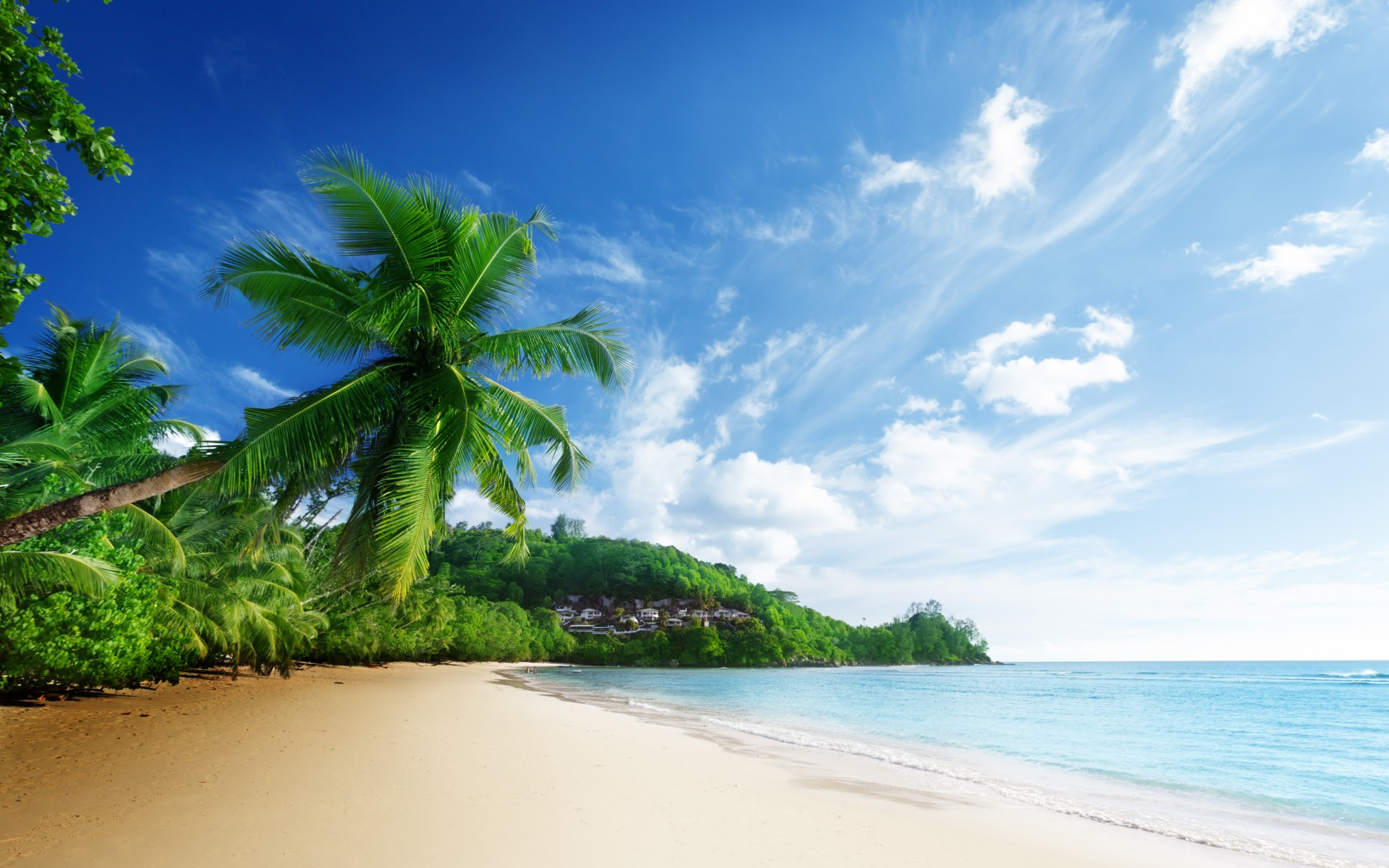... sea beach sky clouds palm trees ocean tropical wallpaper background