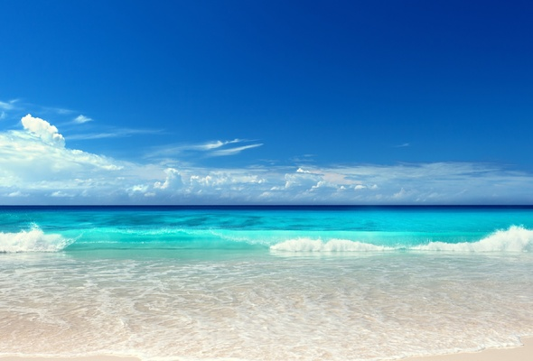Wallpaper seascape ocean beach sunshine sea sun summer wave 590x400