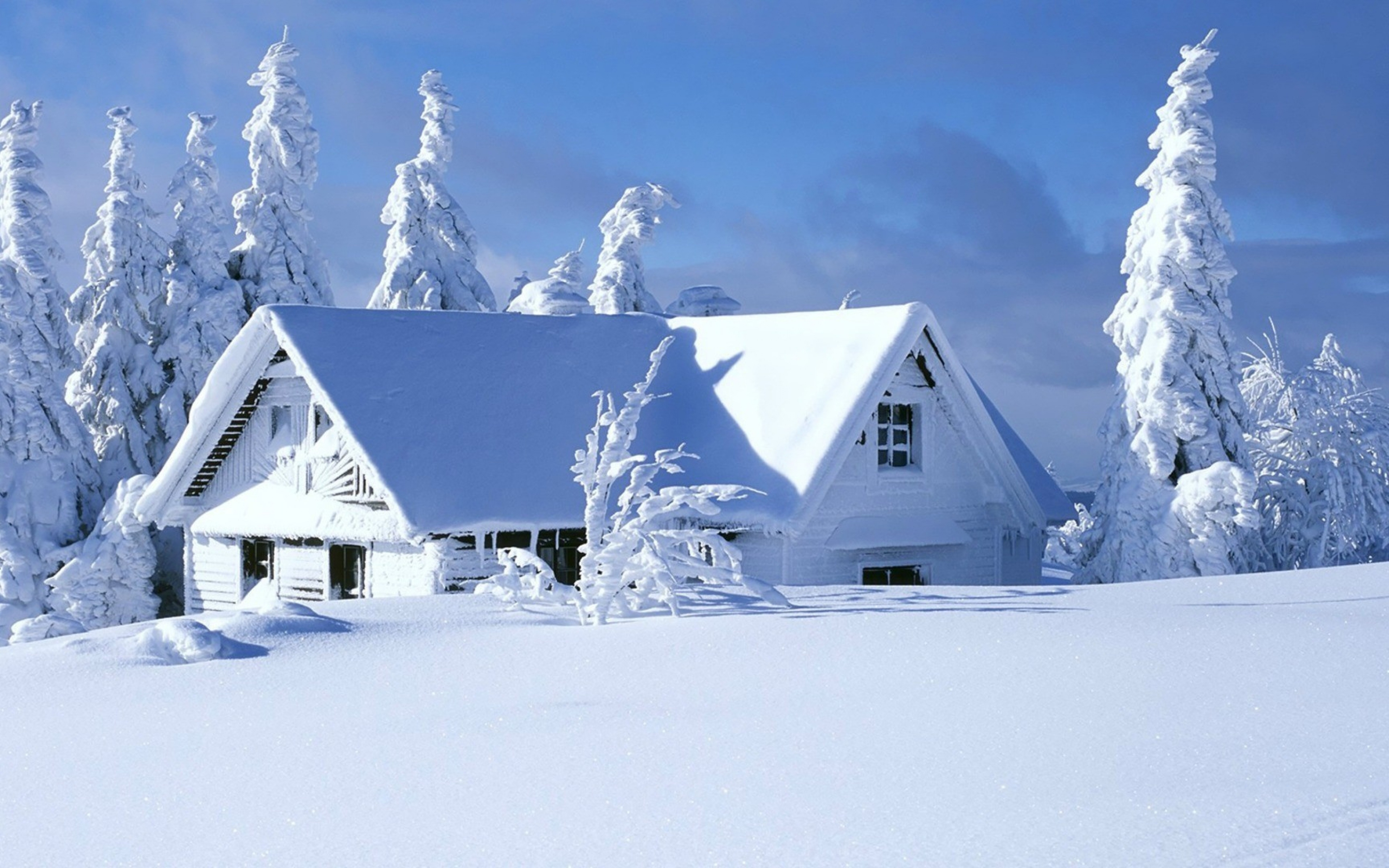 4k Snow Wallpaper Wallpapersafari