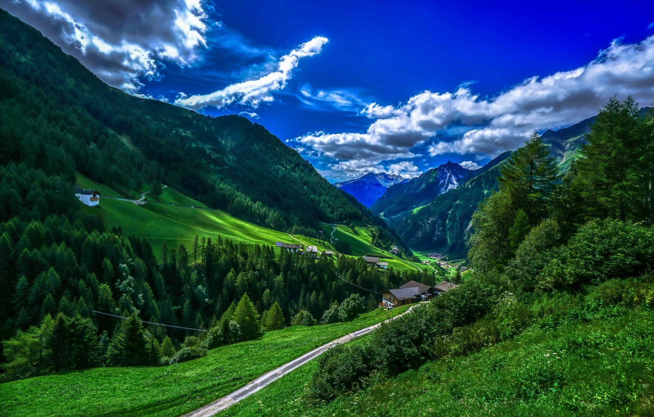 Wallpaper greens forest the sky clouds trees mountains 1332x850