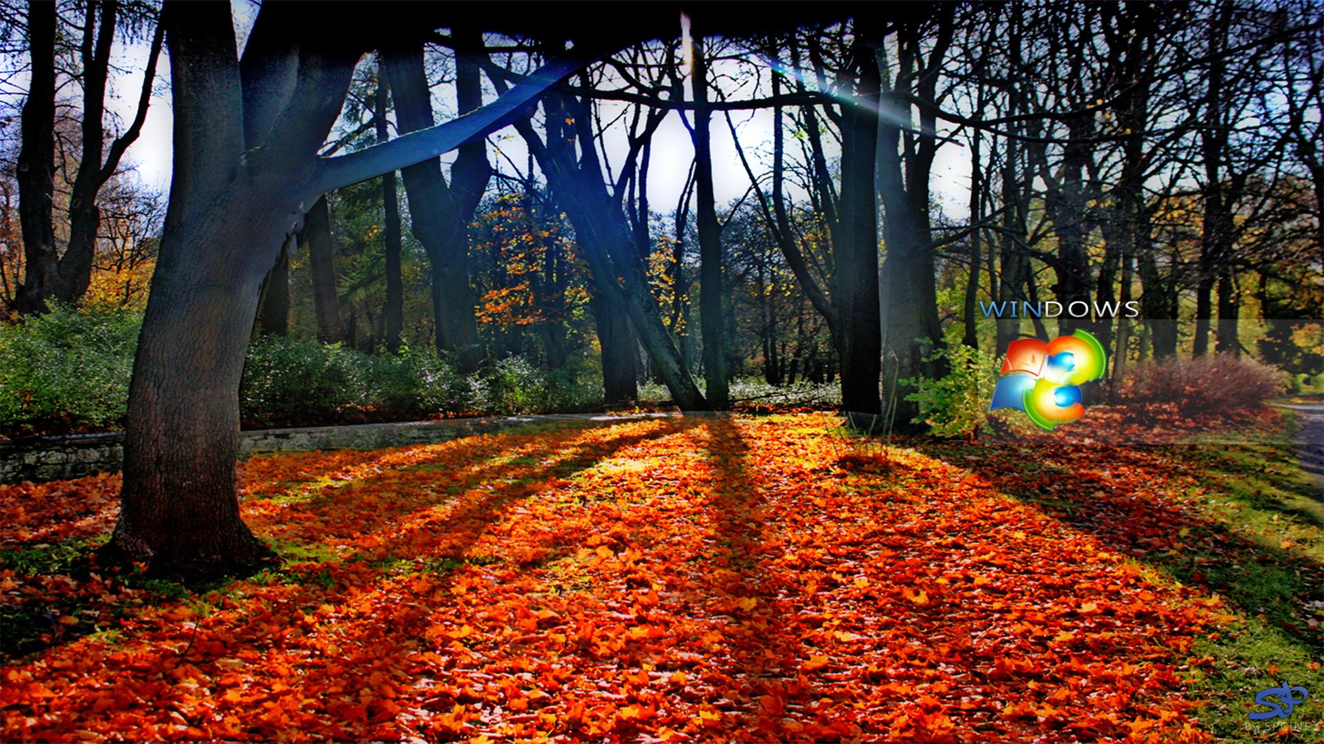 wallpaper mac pc os wallpaper windows 8 autumn walk 2012 no comments 1920x1080