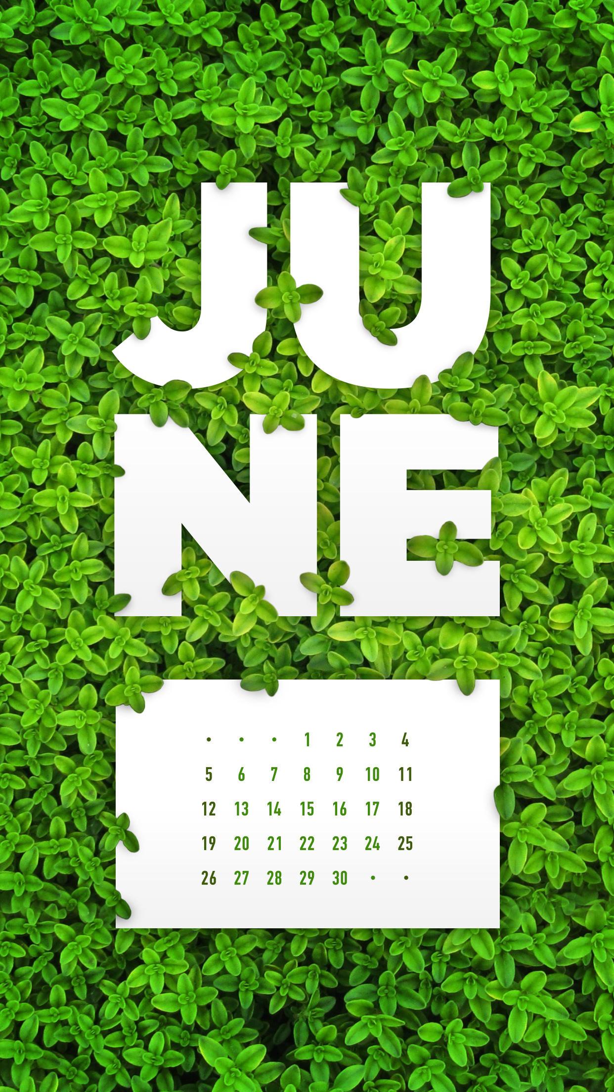 June 2016 Desktop Calendar Wallpaper Paper Leaf 1242x2208