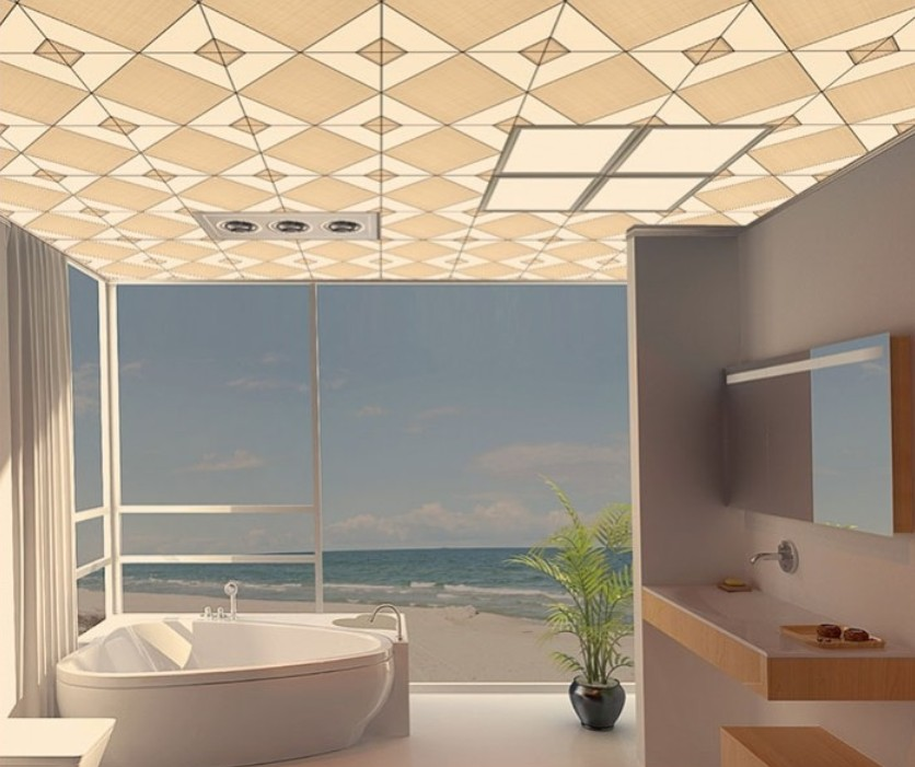 Beach bathroom ceiling designs 3D house 3D house pictures and 836x701