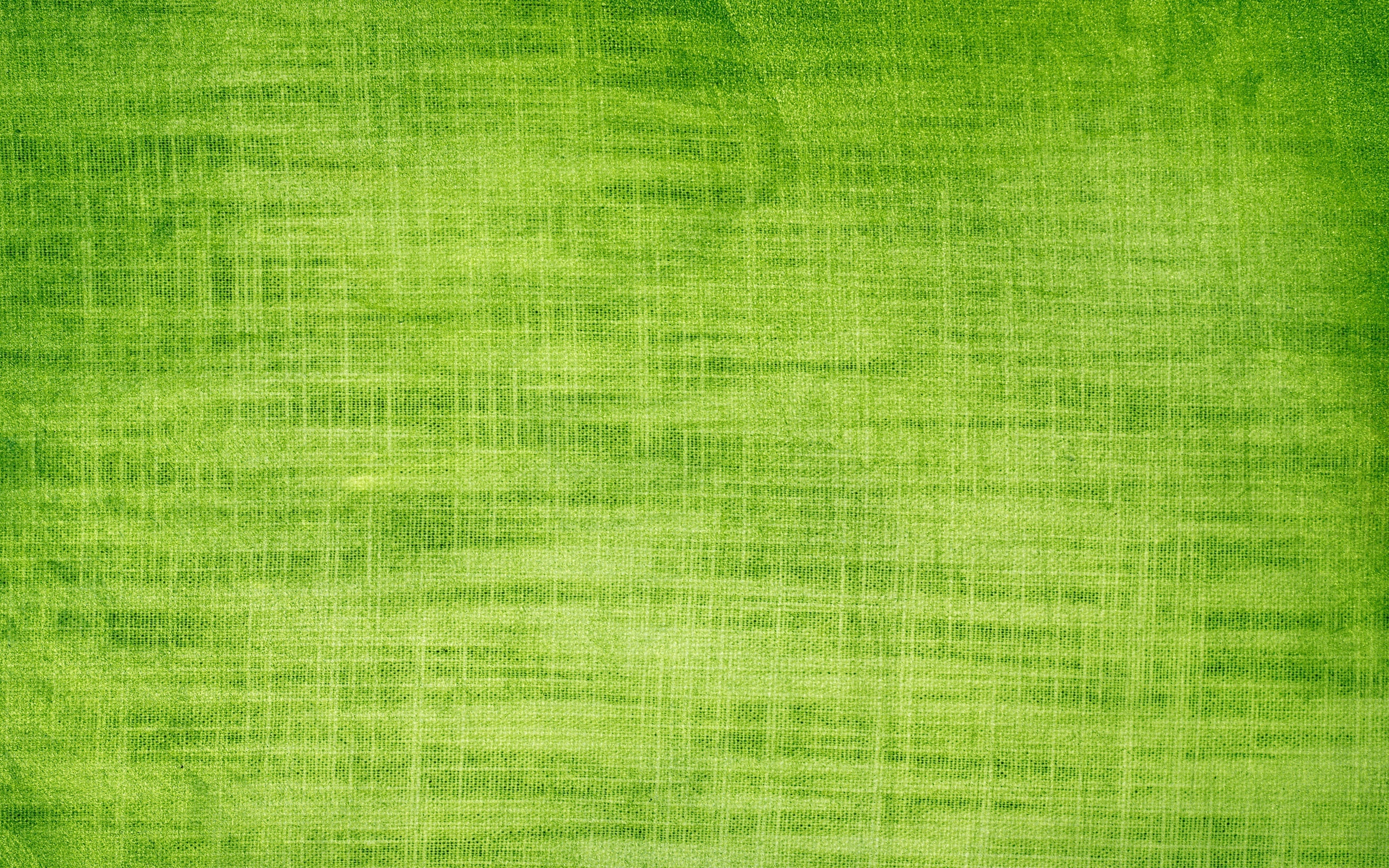 Bright Green Background HD 6880 Wallpaper Cool Walldiskpapercom 2560x1600