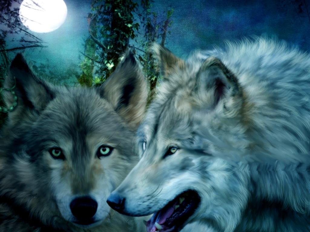 Wolf Wallpaper Border 1024x768