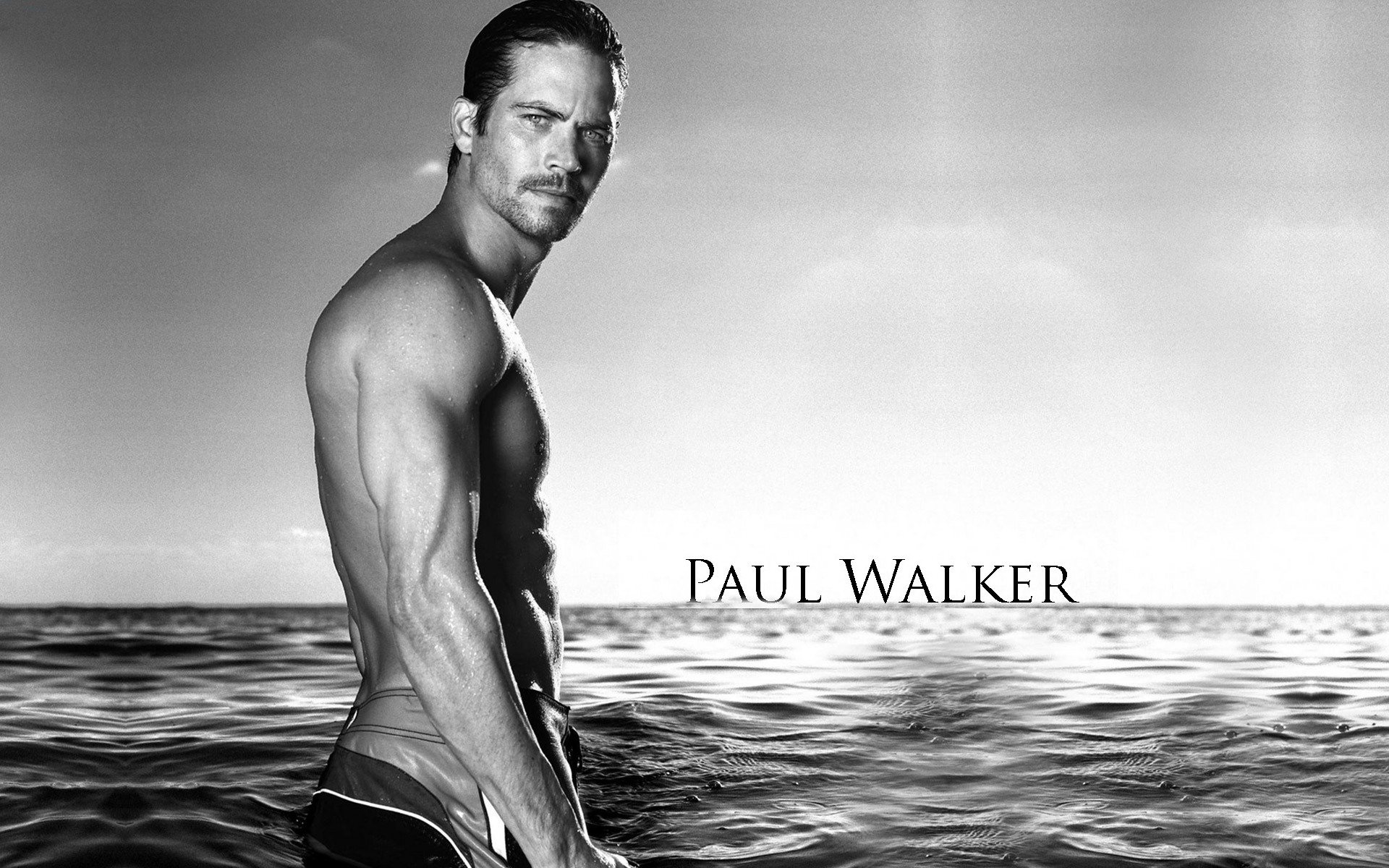 Download paul walker wallpapers desktop wallpapers paul walker paul 1920x1200