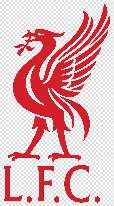 LFC Liverpool FC Anfield Liver bird Logo FA Cup liver 800x1440