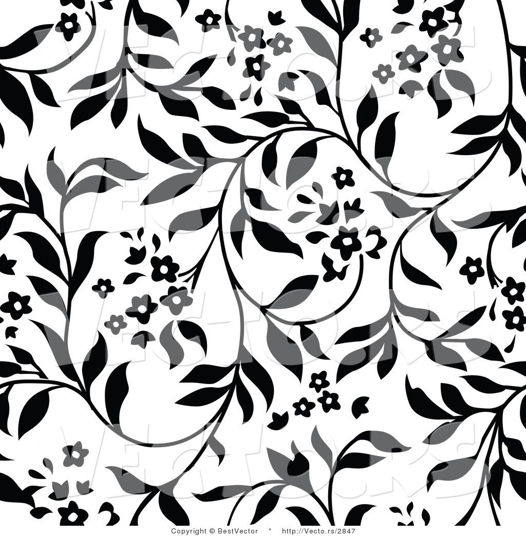 Vector of White and Black Floral Vines Background Pattern Version 1024x1044