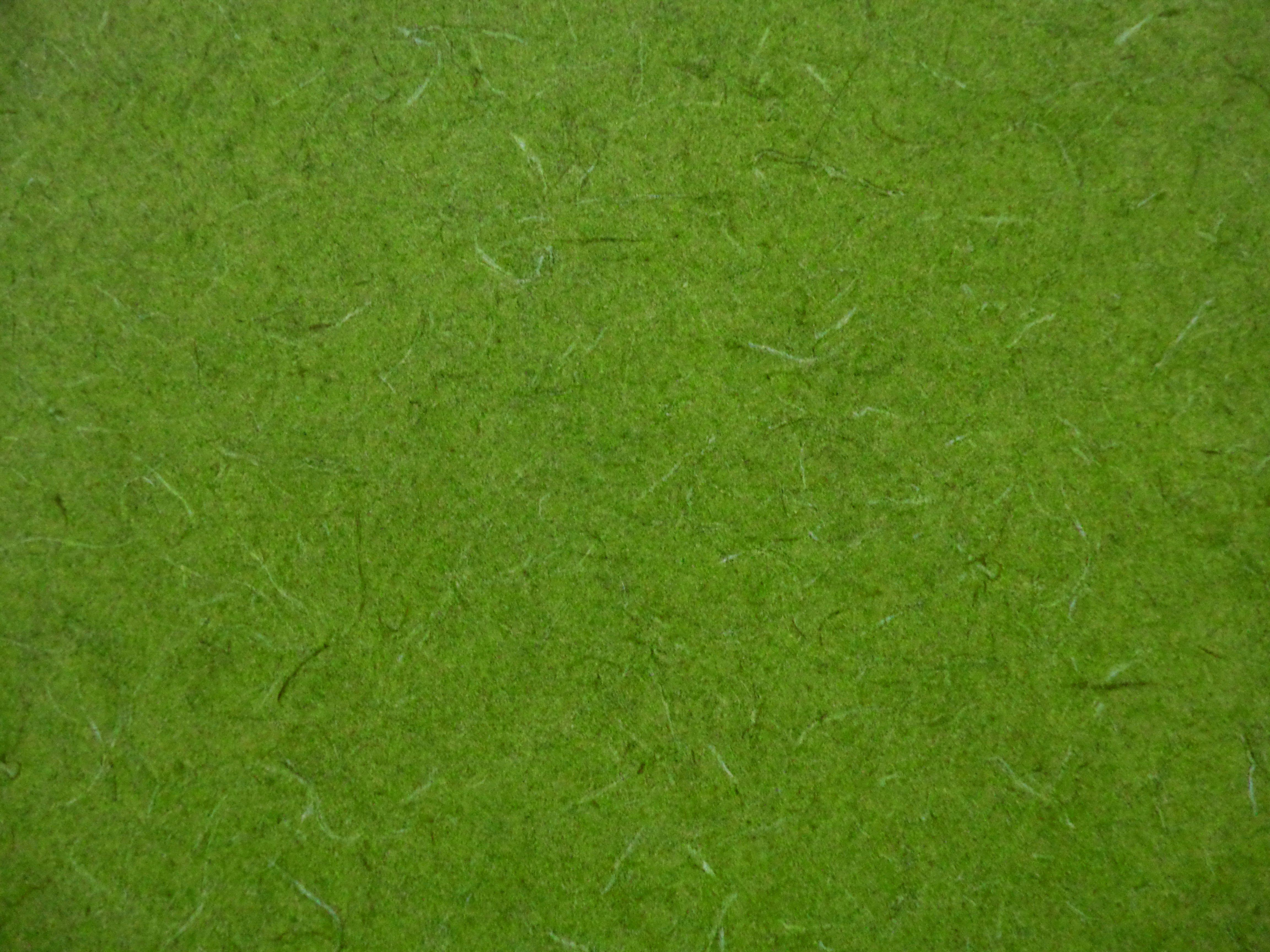 Forest Green Rug
